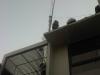 img01873-20120808-1731